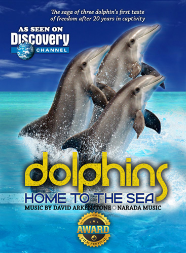 Dolphins Home to the Sea DVD