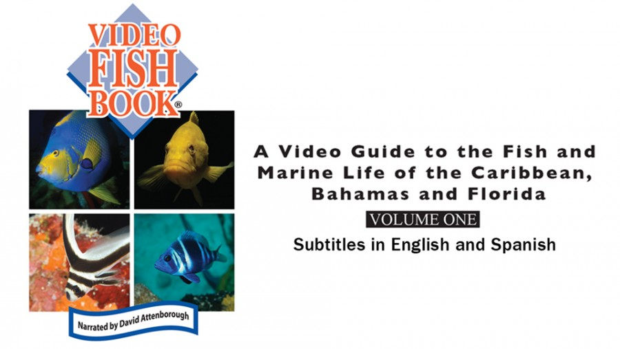 Earth - Video Fish Book, Volume 1