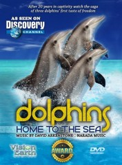 Dolphins, Home to the Sea